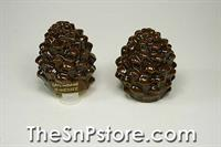 Pinecones Gatlinburg Souvenir Salt  & Pepper Shakers
