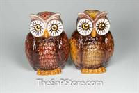 Owls Salt and Pepper Shakers - Magnetic