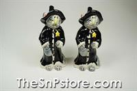 Cat Witch  Salt  & Pepper Shakers